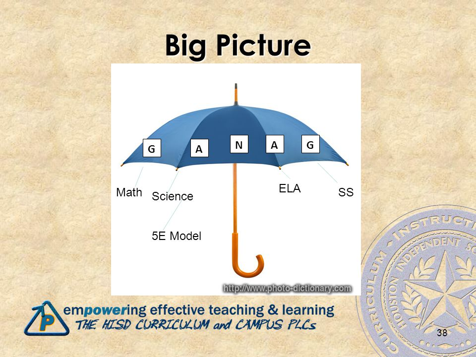 Big Picture 38 GA NAG Math Science ELA SS 5E Model