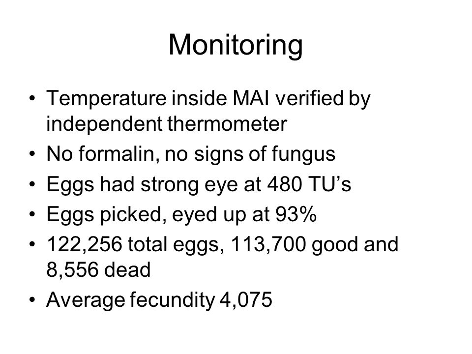 Monitoring Temperature inside MAI verified by independent thermometer No formalin, no signs of fungus Eggs had strong eye at 480 TU's Eggs picked, eyed up at 93% 122,256 total eggs, 113,700 good and 8,556 dead Average fecundity 4,075