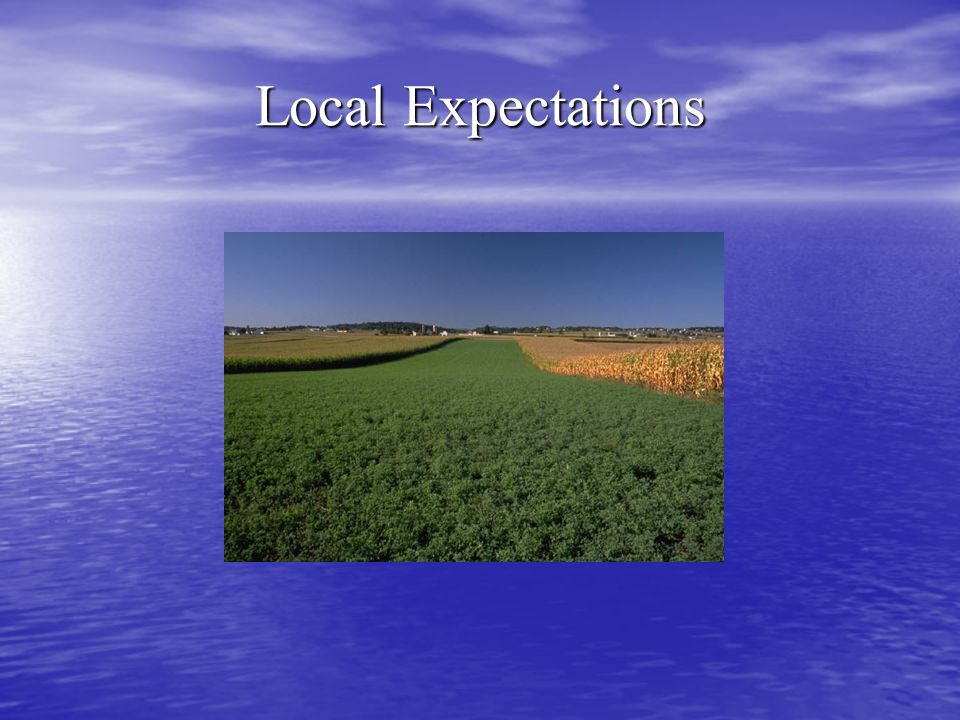 Local Expectations