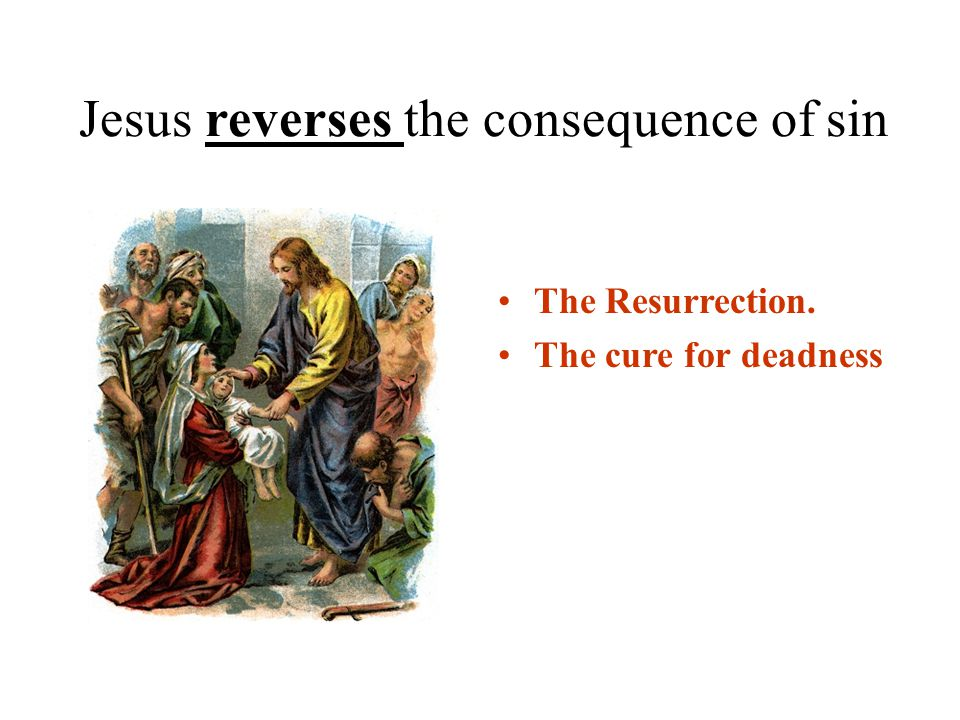 Jesus reverses the consequence of sin The Resurrection. The cure for deadness