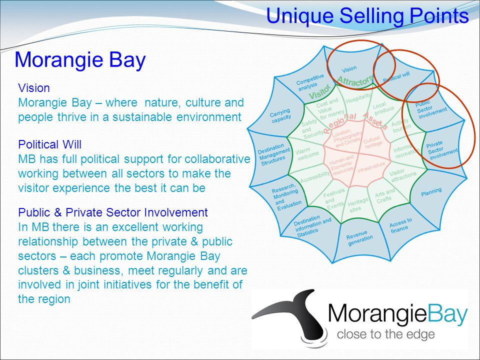 Unique Selling Points Morangie Bay Vision Morangie Bay – where nature, culture and people thrive in a sustainable environment Political Will MB has fu