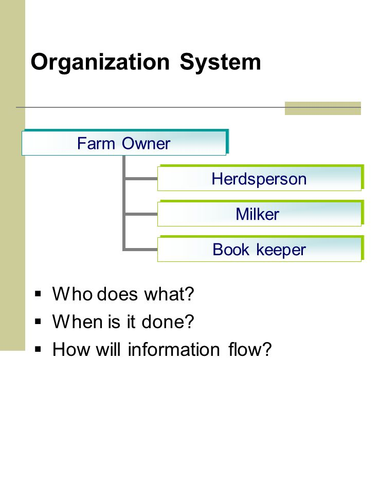 Organization System  Who does what.  When is it done.