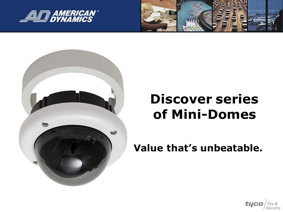 Discover series of Mini-Domes Value that's unbeatable.