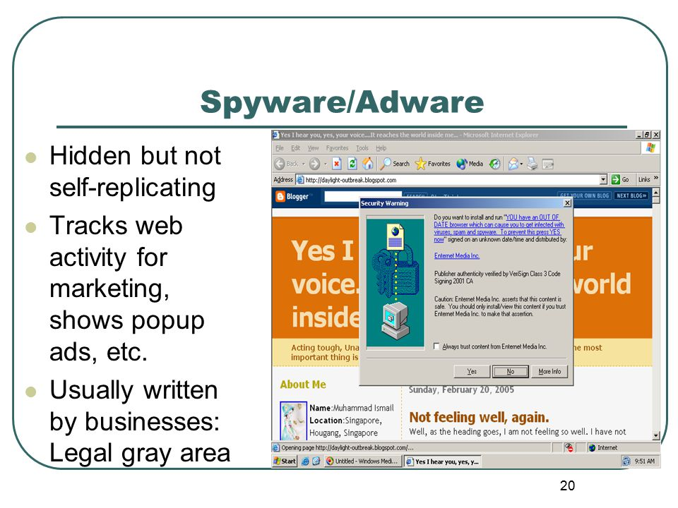 Spyware/Adware 20 Hidden but not self-replicating Tracks web activity for marketing, shows popup ads, etc.