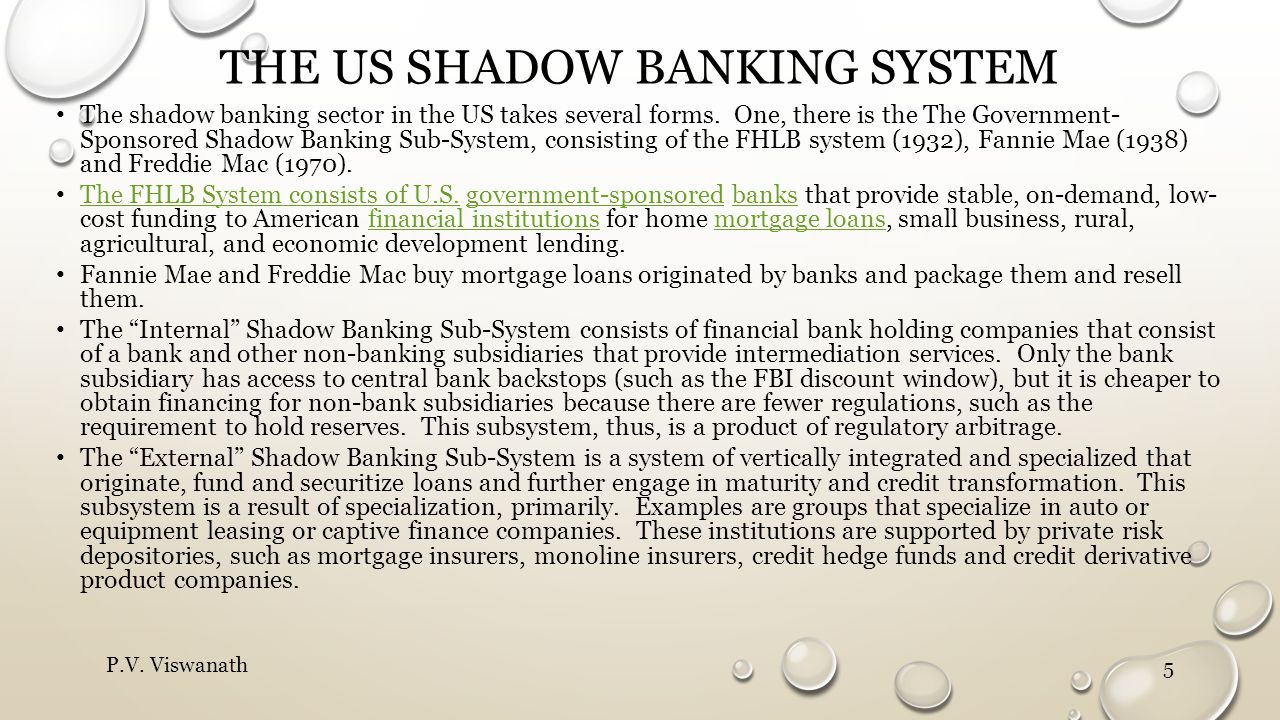 THE US SHADOW BANKING SYSTEM The shadow banking sector in the US takes several forms. One, there is the The Government- Sponsored Shadow Banking Sub-S