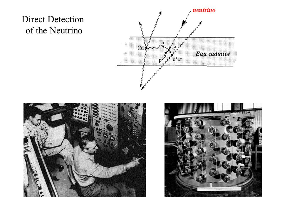 Direct Detection of the Neutrino