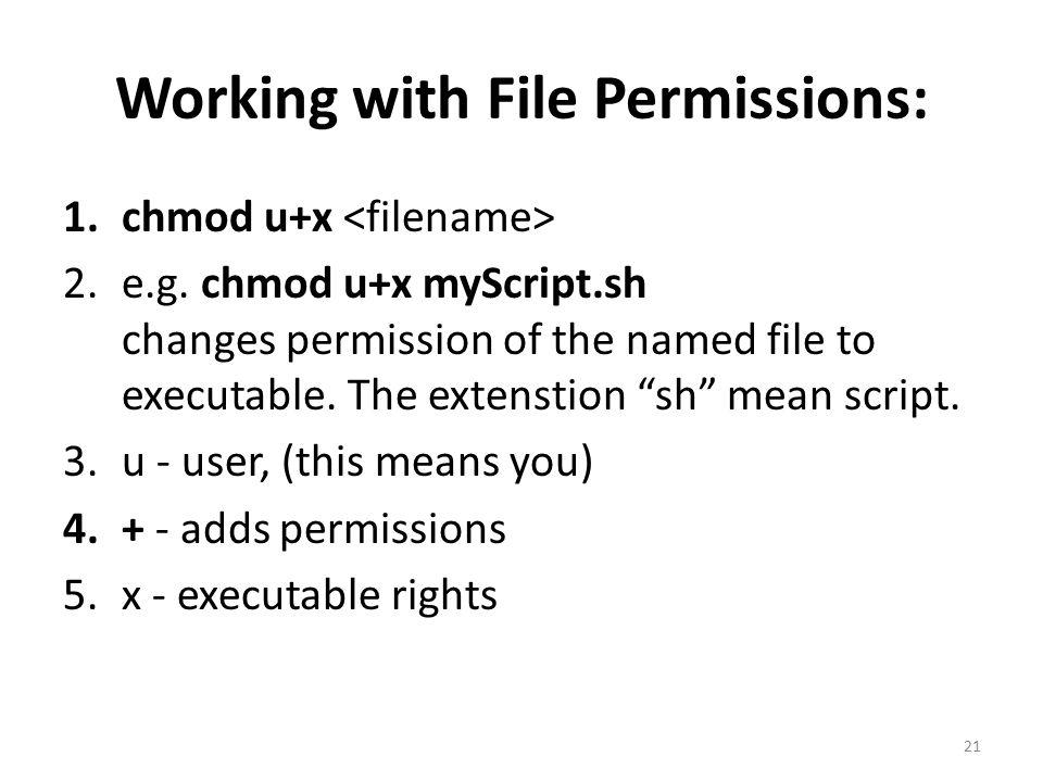 Working with File Permissions: 1.chmod u+x 2.e.g.