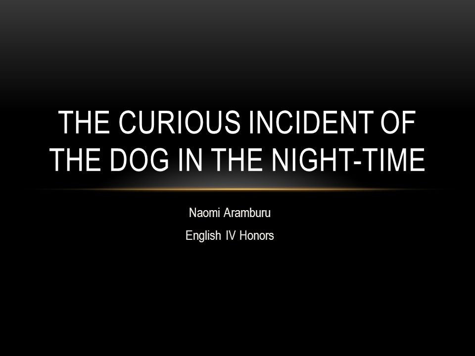 Naomi Aramburu English IV Honors THE CURIOUS INCIDENT OF THE DOG IN THE NIGHT-TIME