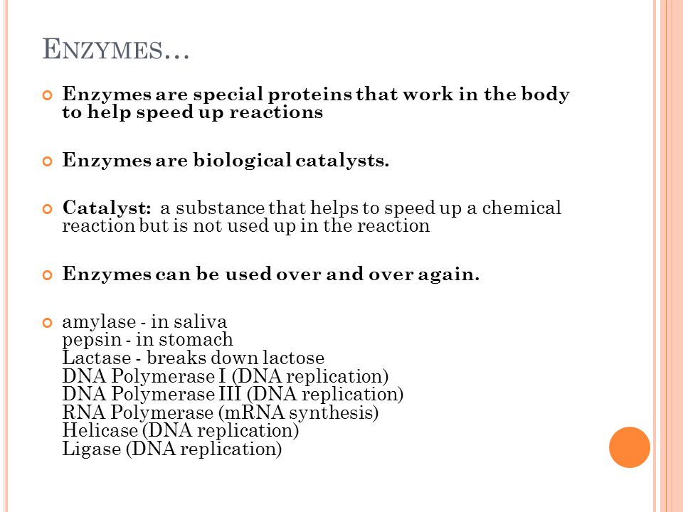 E NZYMES … Enzymes are special proteins that work in the body to help speed up reactions Enzymes are biological catalysts.