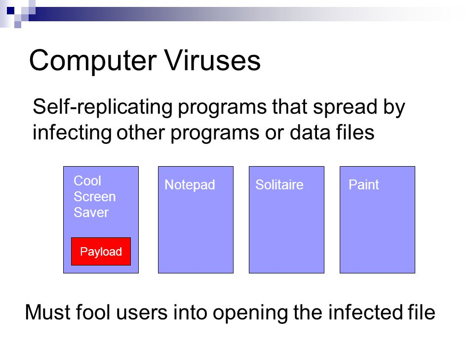 Computer Viruses Self-replicating programs that spread by infecting other programs or data files Payload Cool Screen Saver Must fool users into opening the infected file NotepadSolitairePaint Payload