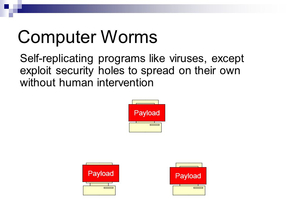Payload Computer Worms Self-replicating programs like viruses, except exploit security holes to spread on their own without human intervention Payload