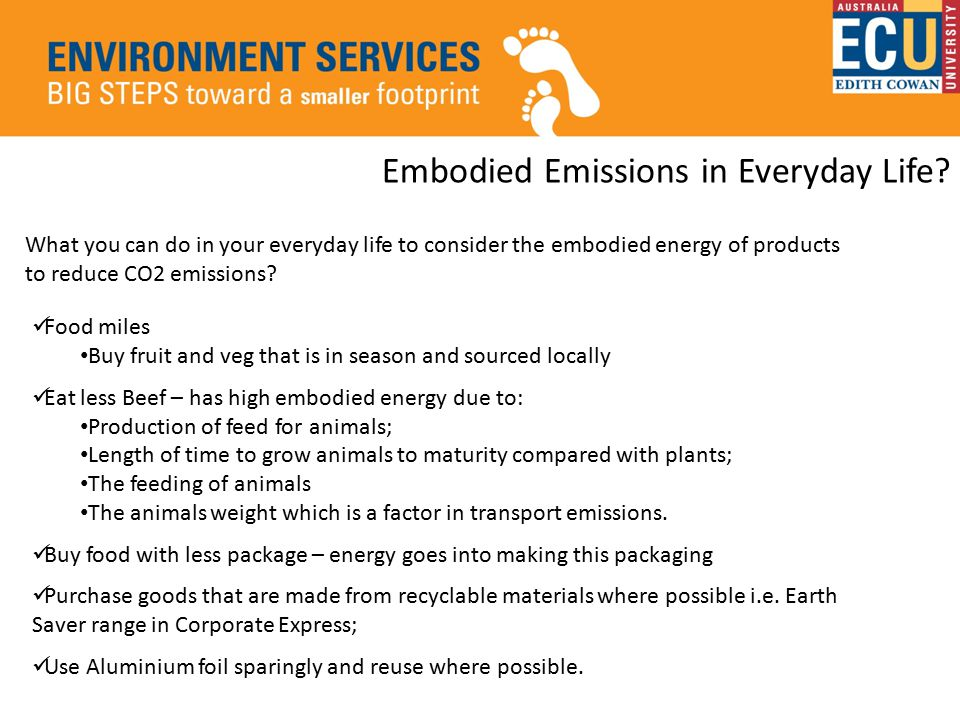 What you can do in your everyday life to consider the embodied energy of products to reduce CO2 emissions.