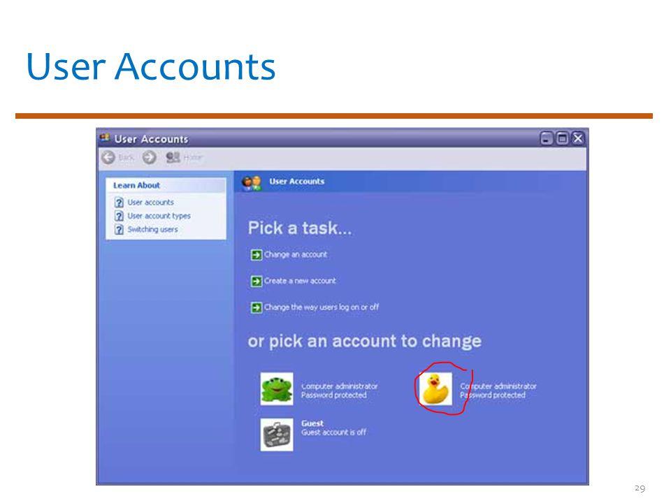 User Accounts 29
