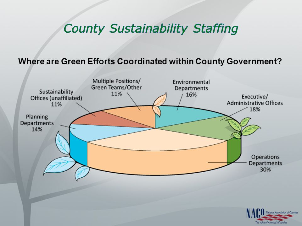 Where are Green Efforts Coordinated within County Government
