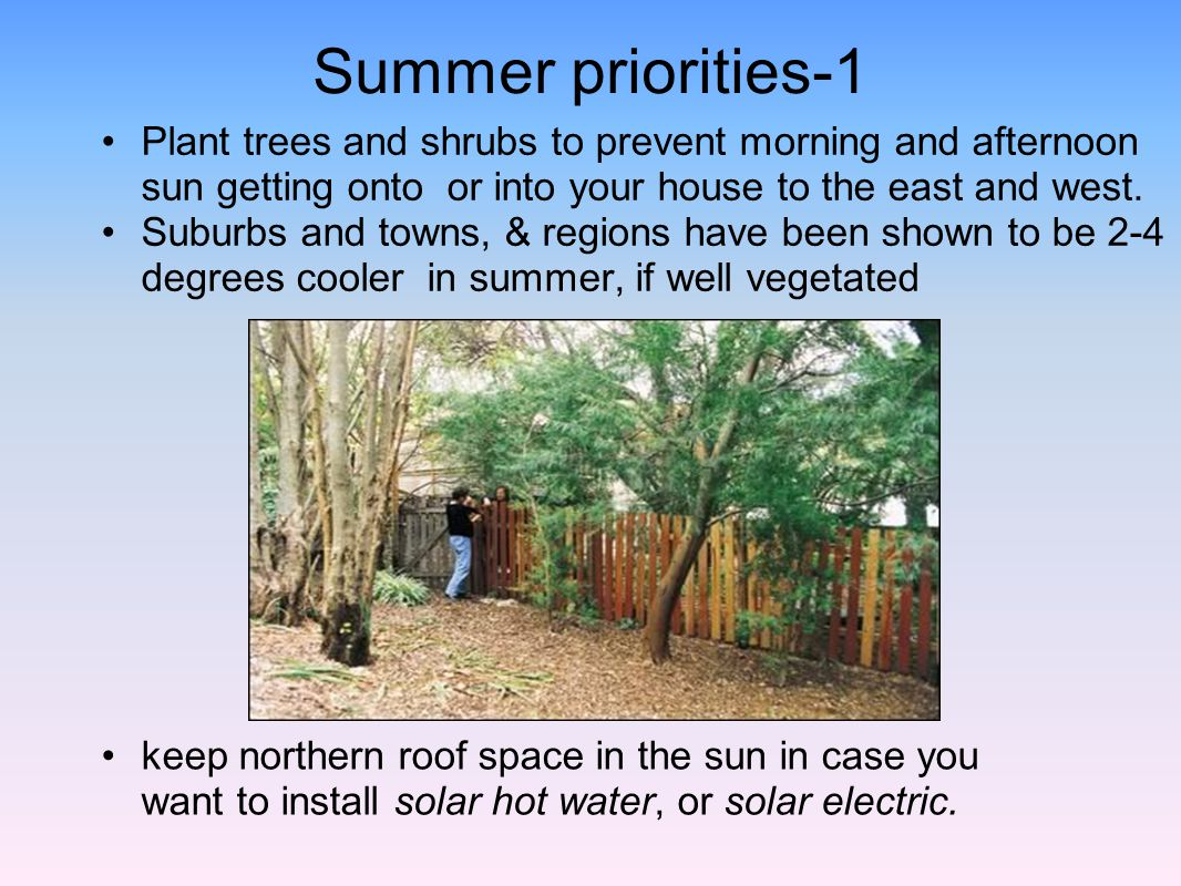 Summer priorities-1 Plant trees and shrubs to prevent morning and afternoon sun getting onto or into your house to the east and west. Suburbs and town