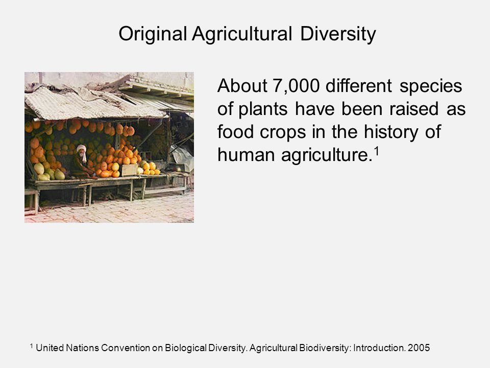 About 7,000 different species of plants have been raised as food crops in the history of human agriculture. 1 1 United Nations Convention on Biologica