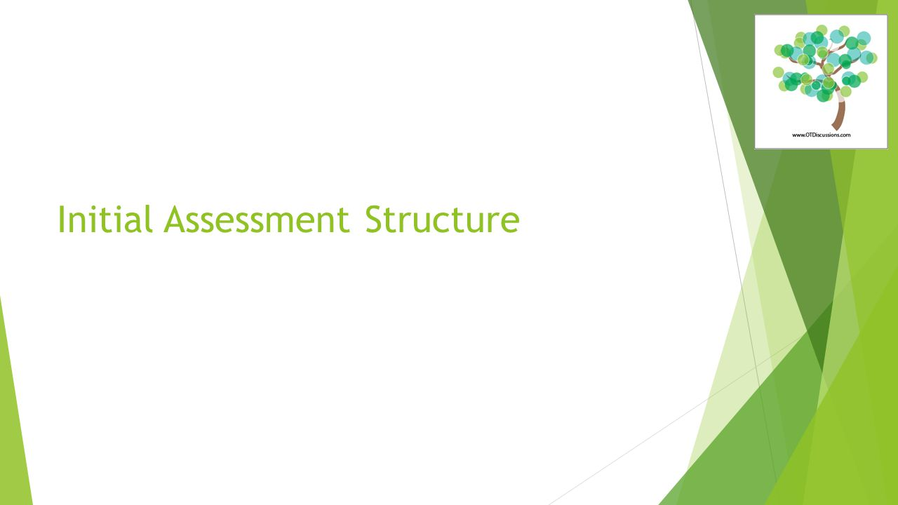 Initial Assessment Structure