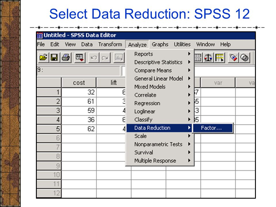 Select Data Reduction: SPSS 12