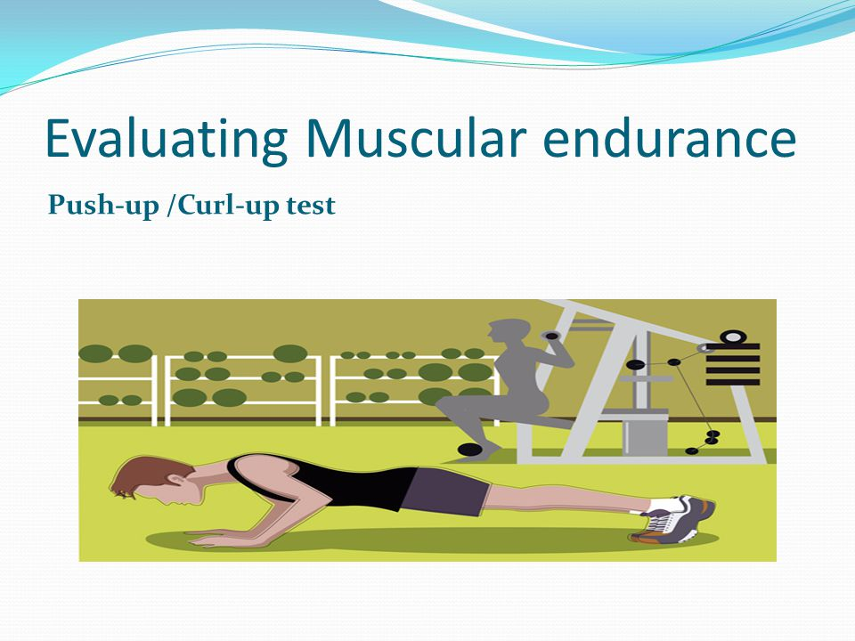 Evaluating your flexibility fitness A joint is a place where bones meet in the skeleton of the body.