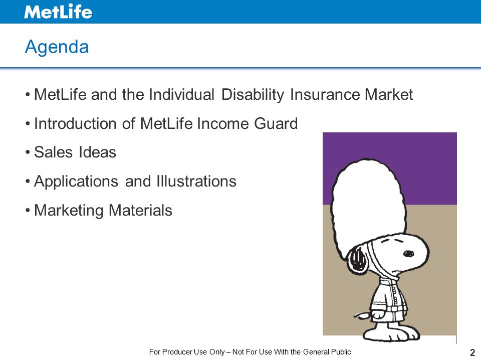 2 Agenda MetLife and the Individual Disability Insurance Market Introduction of MetLife Income Guard Sales Ideas Applications and Illustrations Market