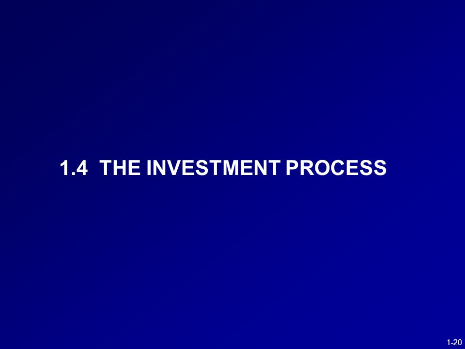 1-20 1.4 THE INVESTMENT PROCESS