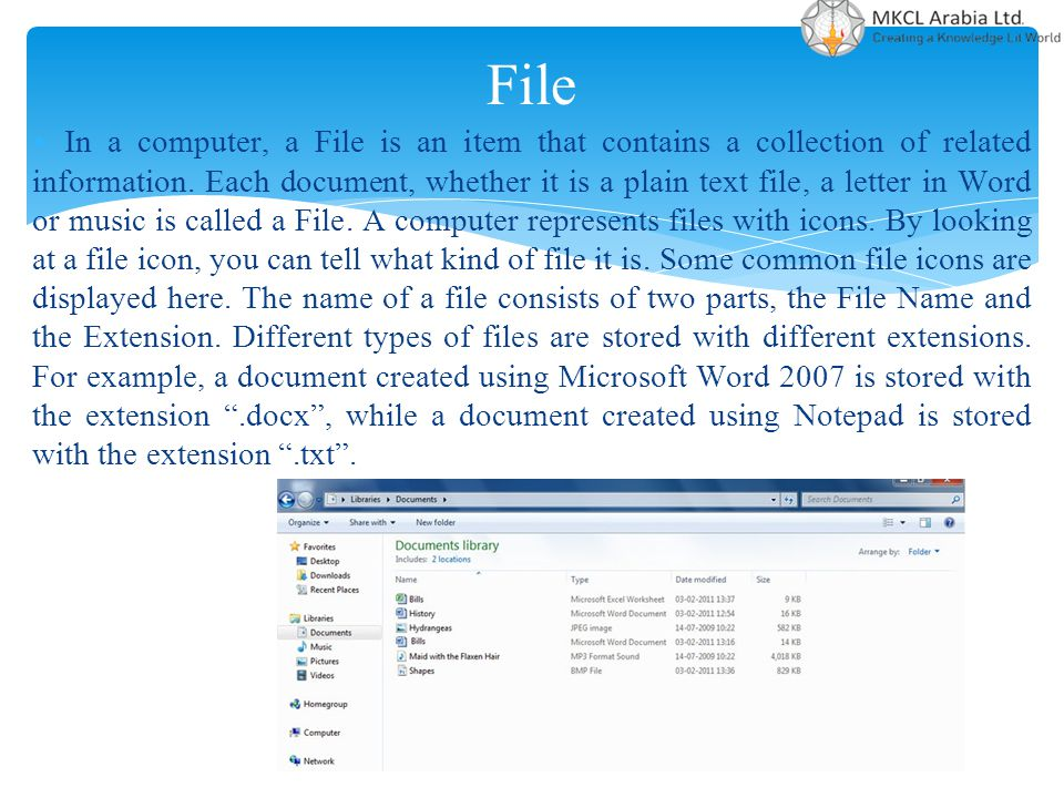 File In a computer, a File is an item that contains a collection of related information. Each document, whether it is a plain text file, a letter in W