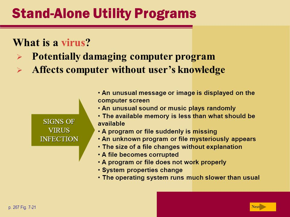 Stand-Alone Utility Programs What is a virus.Next p.