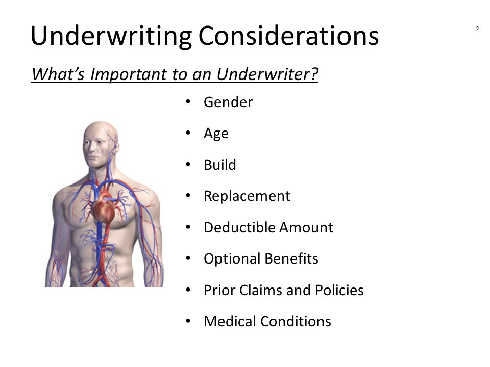 Underwriting Considerations Gender Age Build Replacement Deductible Amount Optional Benefits Prior Claims and Policies Medical Conditions What's Important to an Underwriter.