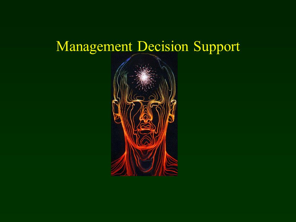 Management Decision Support