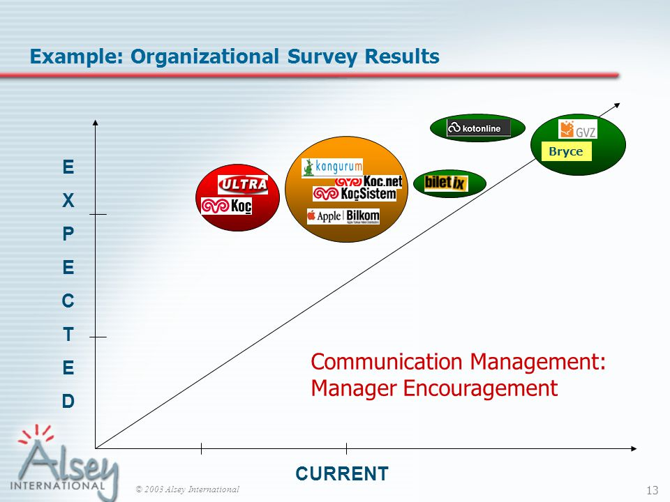 © 2003 Alsey International 13 EXPECTEDEXPECTED CURRENT Bryce Example: Organizational Survey Results Communication Management: Manager Encouragement