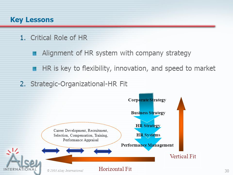 © 2003 Alsey International 30 Key Lessons 1.Critical Role of HR Alignment of HR system with company strategy HR is key to flexibility, innovation, and speed to market 2.Strategic-Organizational-HR Fit Career Development, Recruitment, Selection, Compensation, Training, Performance Appraisal Business Strategy HR Strategy HR Systems Corporate Strategy Performance Management Vertical Fit Horizontal Fit