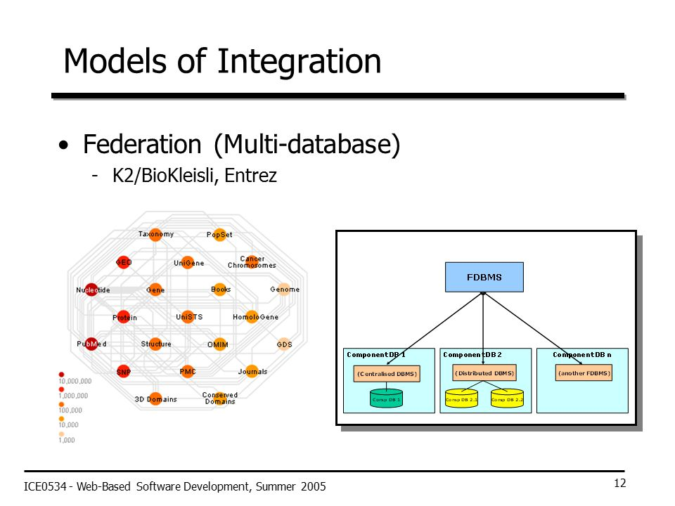 ICE0534 - Web-Based Software Development, Summer 2005 12 Models of Integration Federation (Multi-database) -K2/BioKleisli, Entrez