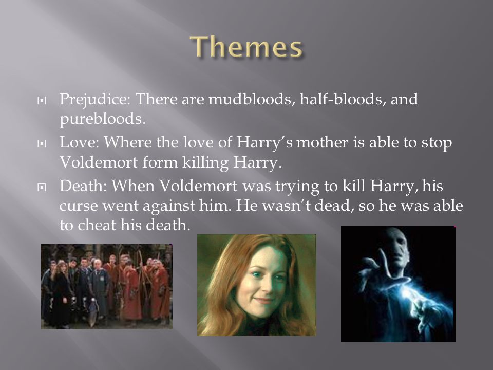  Prejudice: There are mudbloods, half-bloods, and purebloods.