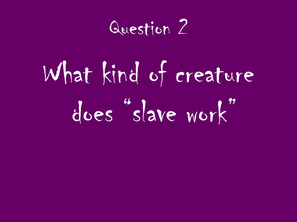 Question 2 What kind of creature does slave work