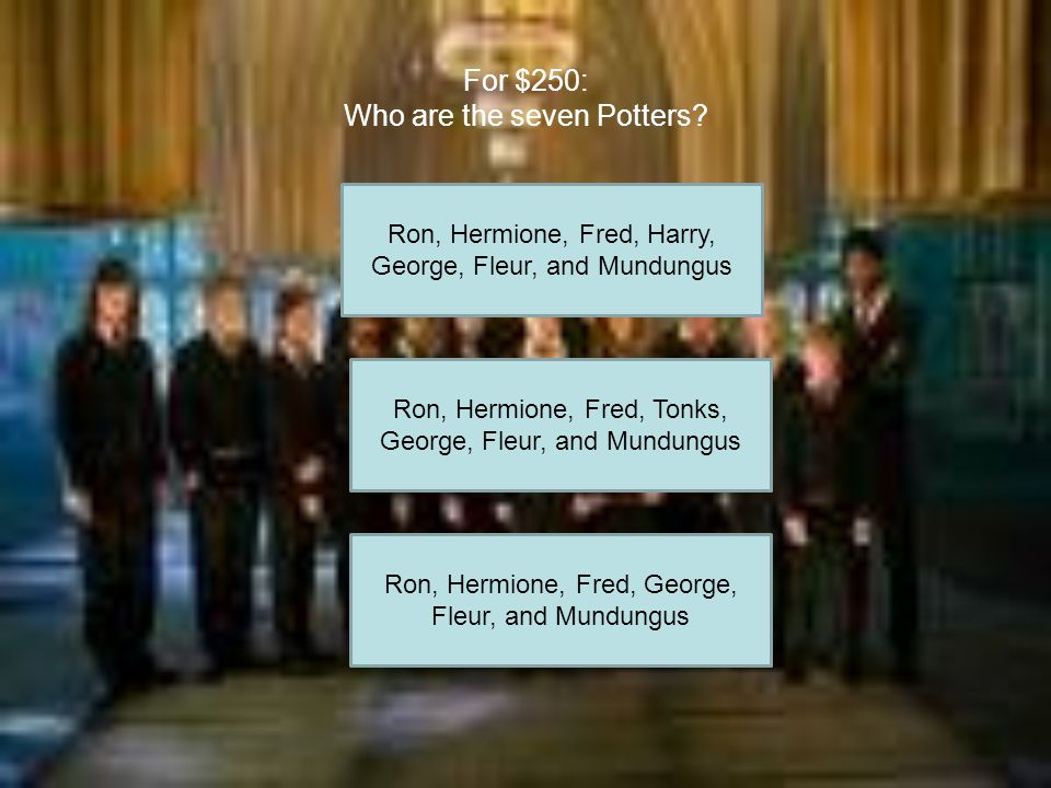 For $150: When Harry sees Dumbledore at Kings Cross what is he wearing? His birthday suit School Robes Muggle clothes