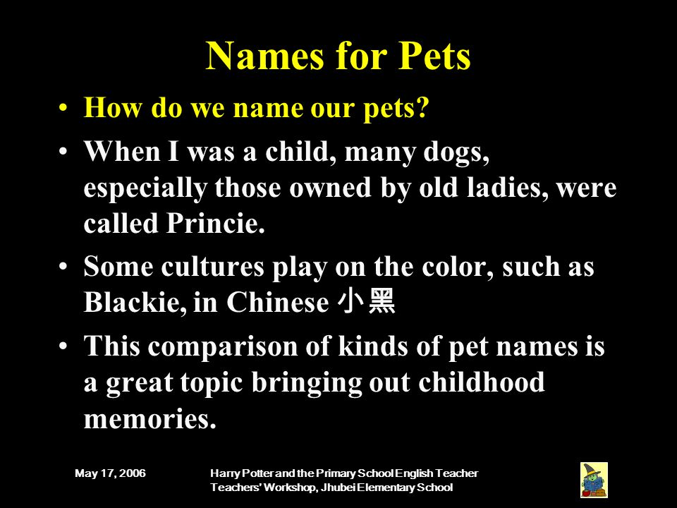 May 17, 2006Harry Potter and the Primary School English Teacher Teachers' Workshop, Jhubei Elementary School Names for Pets How do we name our pets.