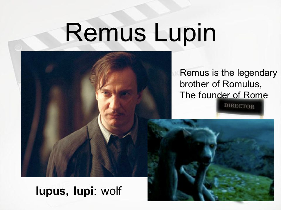 Remus Lupin lupus, lupi: wolf Remus is the legendary brother of Romulus, The founder of Rome