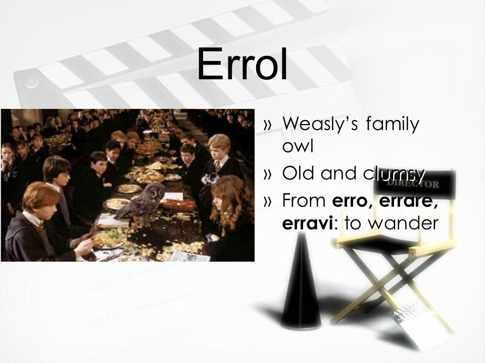 Errol »Weasly's family owl »Old and clumsy »From erro, errare, erravi : to wander