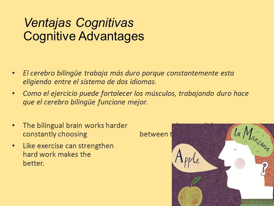 Ventajas Cognitivas Cognitive Advantages El cerebro bilingüe trabaja más duro porque constantemente esta eligiendo entre el sistema de dos idiomas.