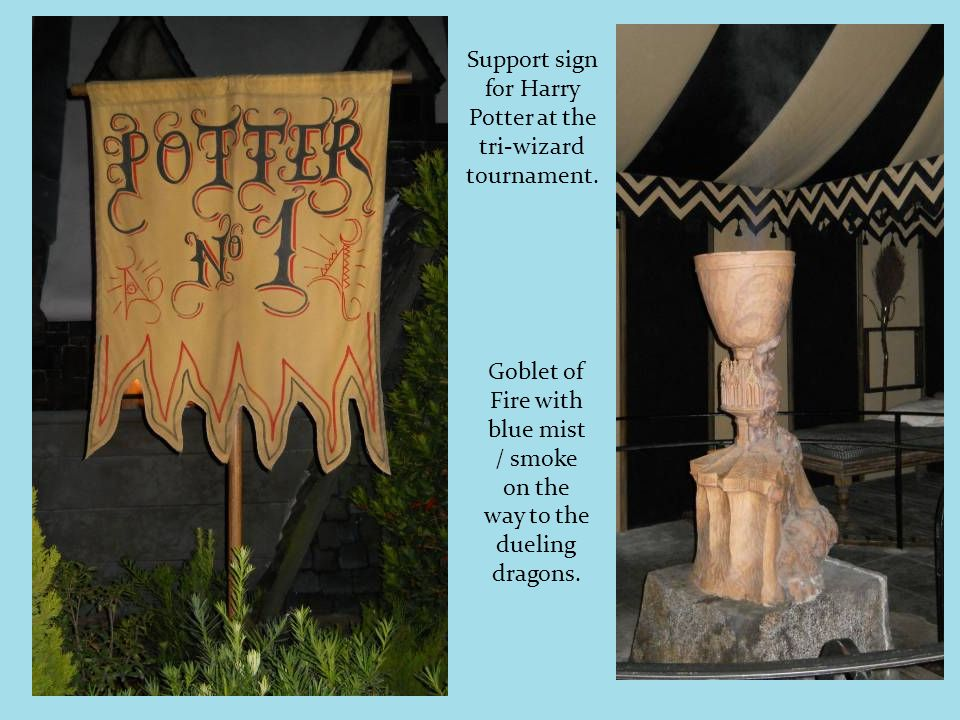Support sign for Harry Potter at the tri-wizard tournament.