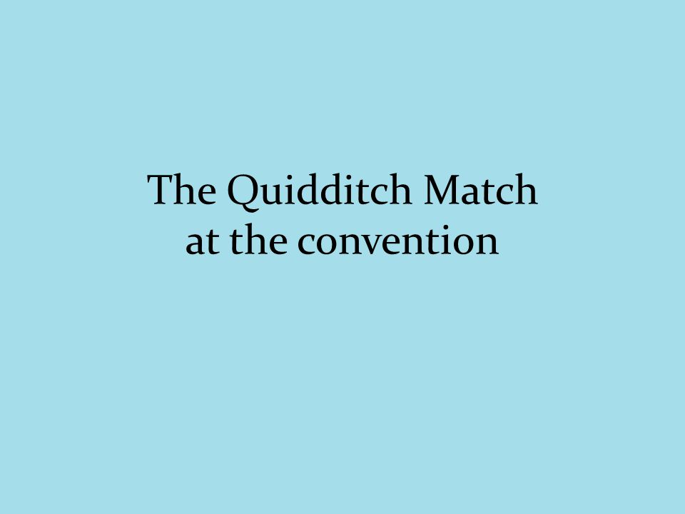 The Quidditch Match at the convention