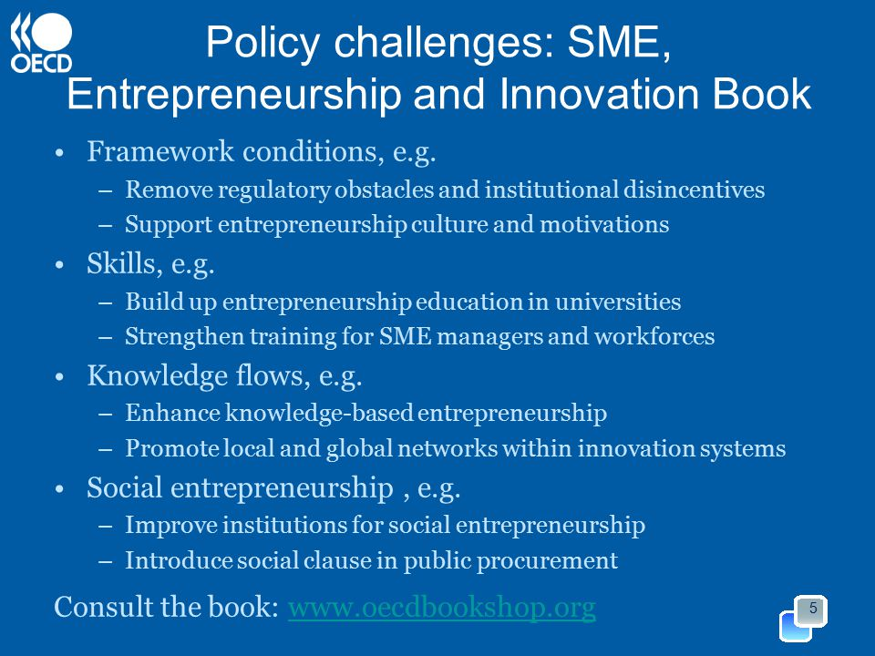 Policy challenges: SME, Entrepreneurship and Innovation Book Framework conditions, e.g.
