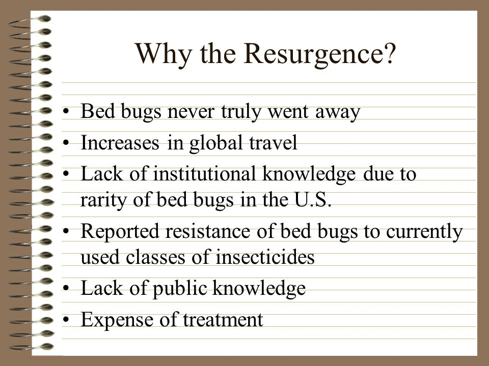 Biology of the Bed Bug Small - 3/16 inch long, oval, flat, reddish - brown insects Obligate human ectoparasite Nocturnally active, and feed almost painlessly Normally found within 5- 20 feet of host Give off a distinctive musty, sweetish odor MALE FEMALE