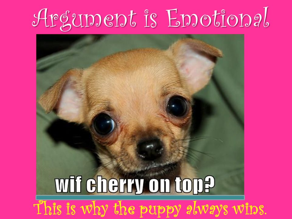 Argument is Emotional This is why the puppy always wins.