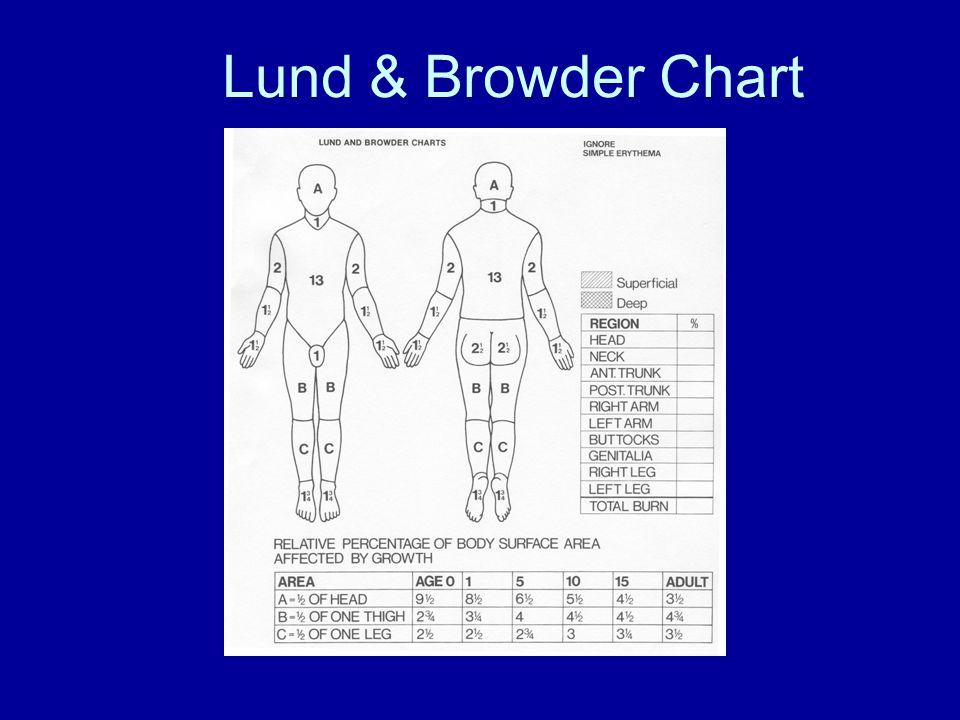 Lund & Browder Chart