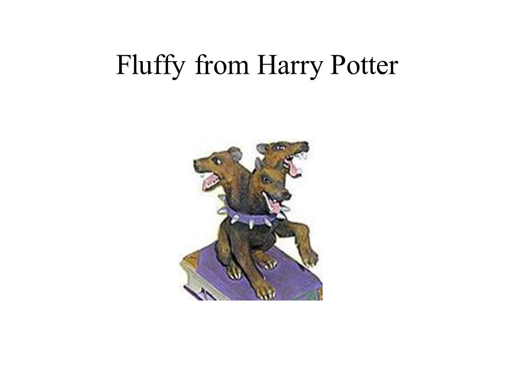 Fluffy from Harry Potter