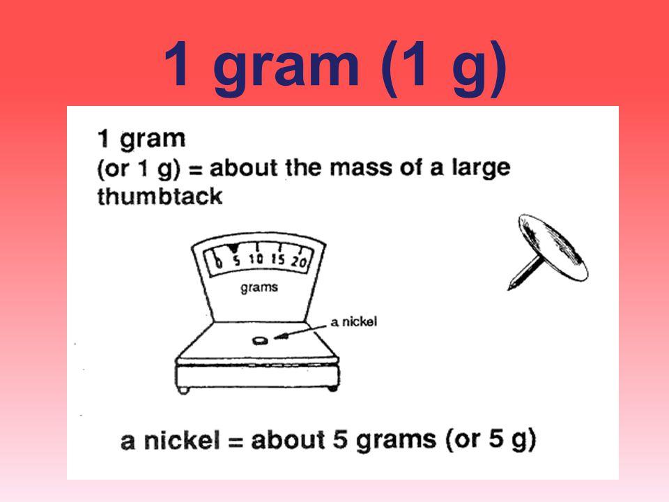 1 gram (1 g)