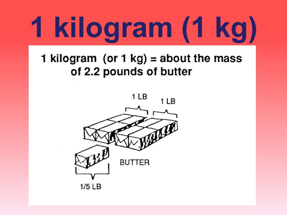 1 kilogram (1 kg)