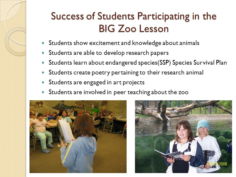 Success of Students Participating in the BIG Zoo Lesson Students show excitement and knowledge about animals Students are able to develop research papers Students learn about endangered species(SSP) Species Survival Plan Students create poetry pertaining to their research animal Students are engaged in art projects Students are involved in peer teaching about the zoo