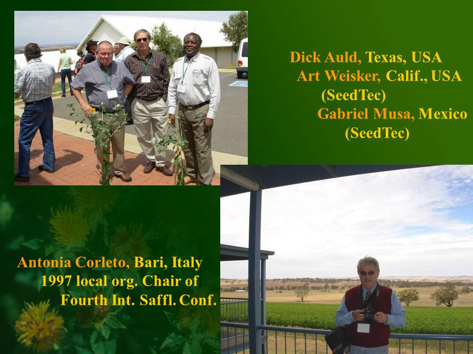 Dick Auld, Texas, USA Art Weisker, Calif., USA (SeedTec) Gabriel Musa, Mexico (SeedTec) Antonia Corleto, Bari, Italy 1997 local org.